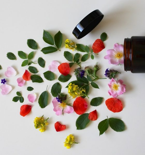 Cosmetice bio – avantaje și beneficii